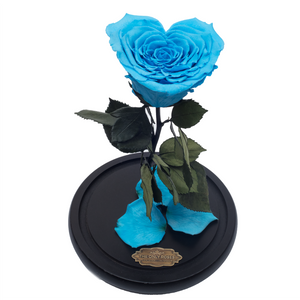 Blue with Crystal Dust Heart Shape Preserved Rose | Beauty and The Beast Glass Dome - The Only Roses