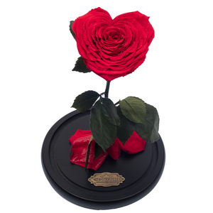 Red with Crystal Dust Heart Shape Preserved Rose | Beauty and The Beast Glass Dome - The Only Roses