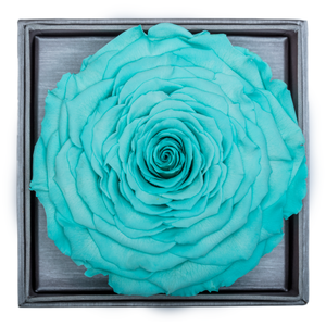 Bright Blue Mega Preserved Rose | Crystalline Rose Box - The Only Roses