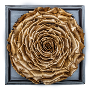 Golden Mega Preserved Rose | Crystalline Rose Box - The Only Roses