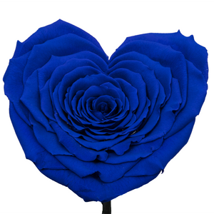 Royal Blue Heart Shape Preserved Rose | Beauty and The Beast Glass Dome - The Only Roses