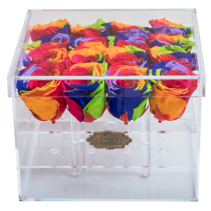 Rainbow Color Preserved Rose | Medium Acrylic Rose Box - The Only Roses