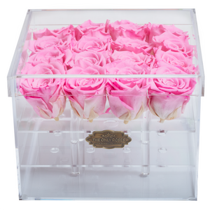 Pink Color Preserved Roses | Medium Acrylic Rose Box - The Only Roses