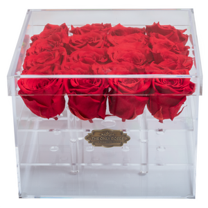 Red Color Preserved Roses | Medium Acrylic Rose Box - The Only Roses