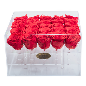 Red Preserved Roses | Large Acrylic Rose Box - The Only Roses
