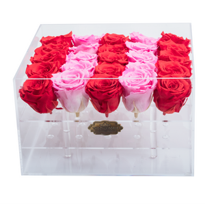 Red and Pink Preserved Roses | Large Acrylic Rose Box - The Only Roses