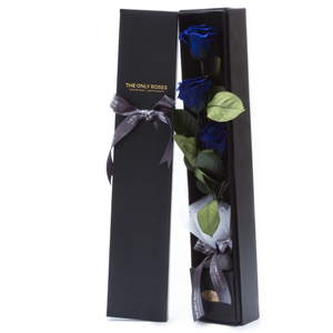 The Only Plus | 3 Royal Blue Preserved Long Stem Roses Bouquet - The Only Roses