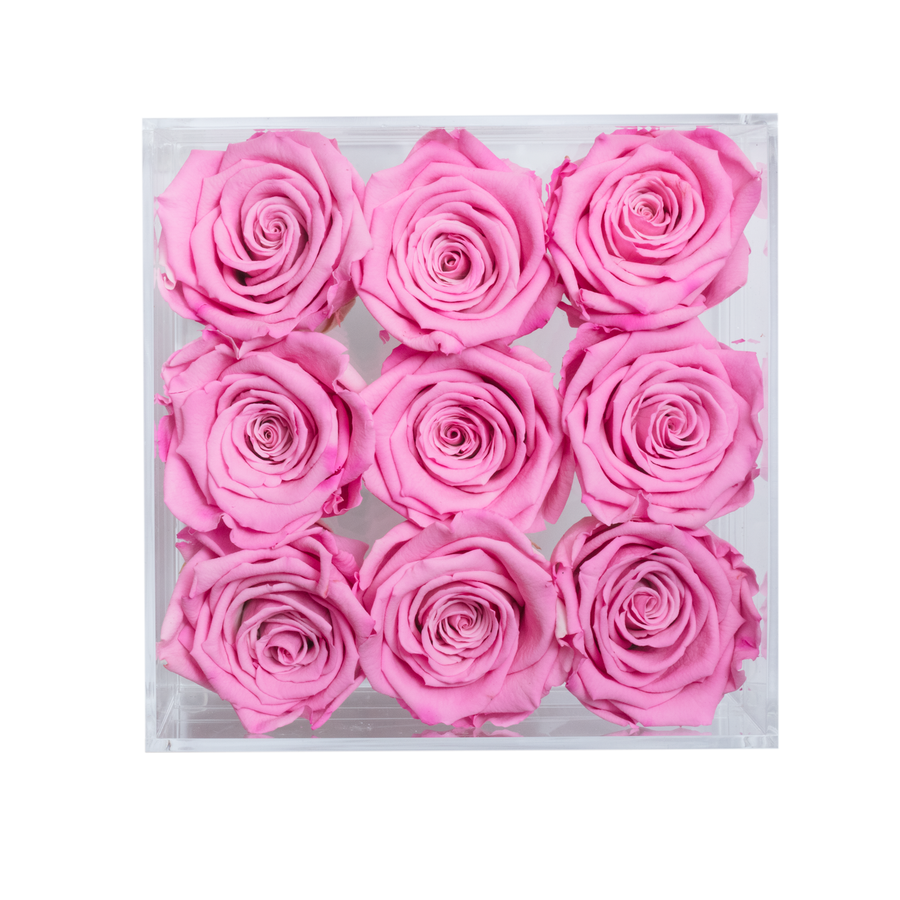 Pink Color Preserved Roses | Small Acrylic Rose Box - The Only Roses