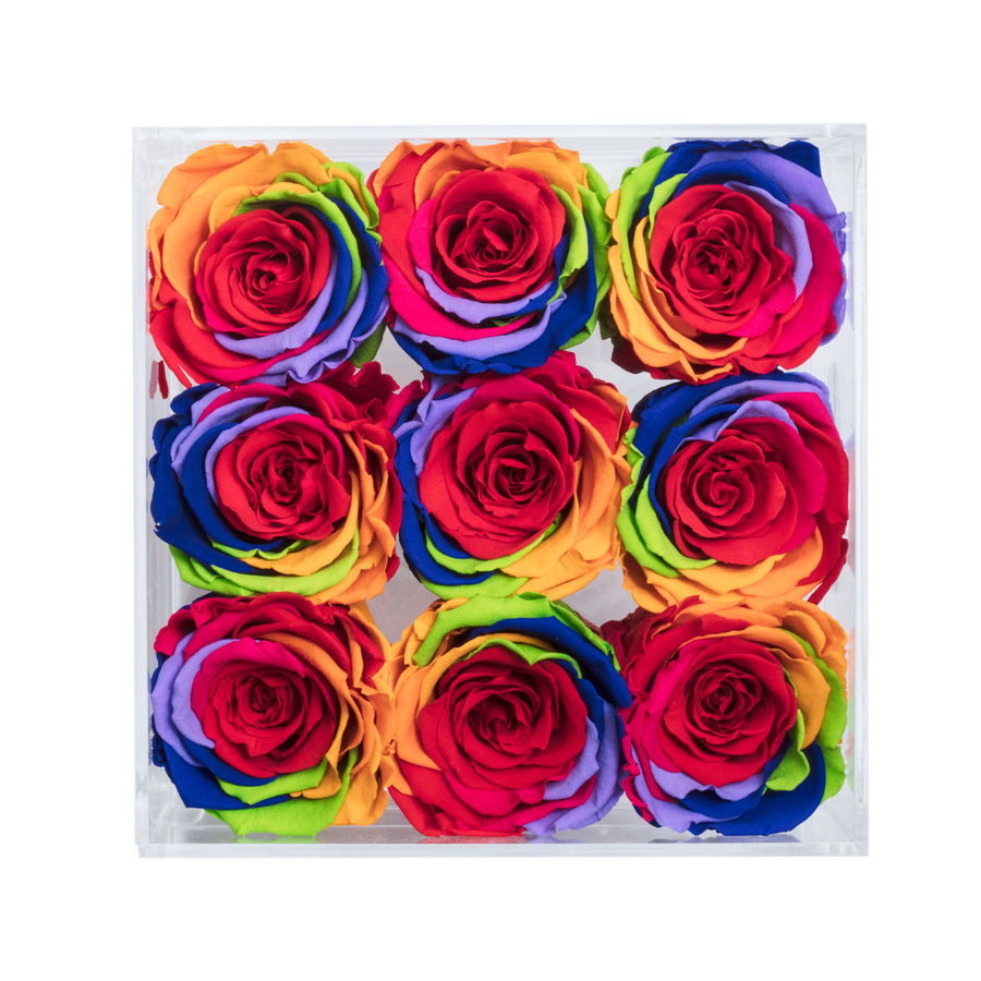 Rainbow Color Preserved Roses | Small Acrylic Rose Box - The Only Roses