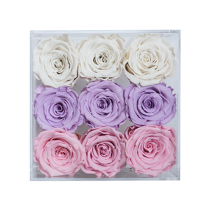 Candy Color Preserved Roses | Small Acrylic Rose Box - The Only Roses