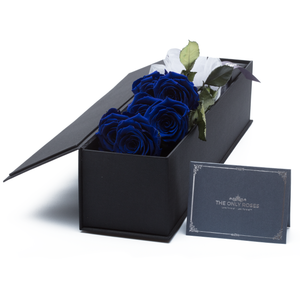 The Only Classic | 6 Royal Blue Preserved Long Stem Roses Bouquet - The Only Roses
