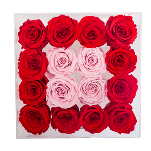 Red and Light Pink Color Preserved Roses | Medium Acrylic Rose Box - The Only Roses