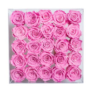 Pink Color Preserved Roses | Large Acrylic Rose Box - The Only Roses