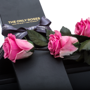 The Only Plus | 3 Pink Preserved Long Stem Roses Bouquet - The Only Roses