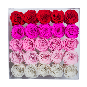 Fade Pink Preserved Roses | Large Acrylic Rose Box - The Only Roses