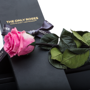 The Only | 1 Pink Preserved Long Stem Rose Bouquet - The Only Roses
