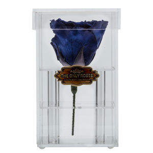 Royal Blue Preserved Rose | Petite Acrylic Rose Box - The Only Roses