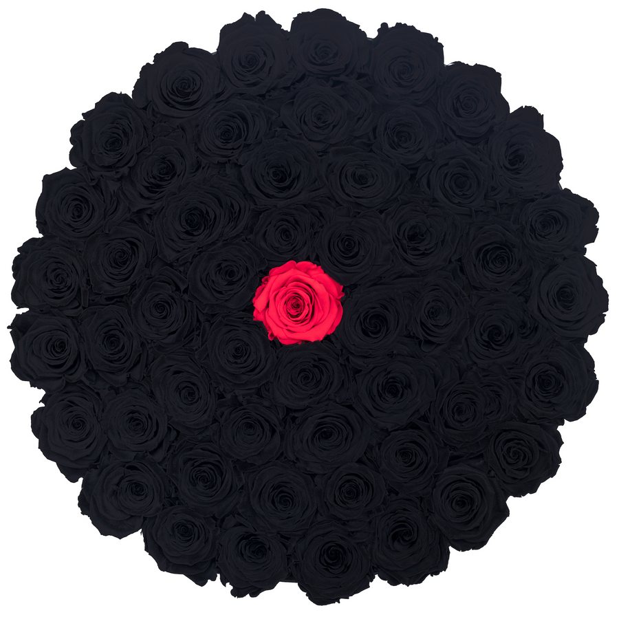 Black & Red Preserved Roses | Large Round Black Huggy Rose Box - The Only Roses