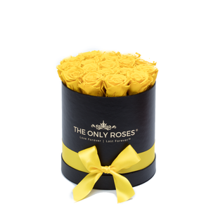 Yellow Preserved Roses | Small Round Black Huggy Rose Box - The Only Roses