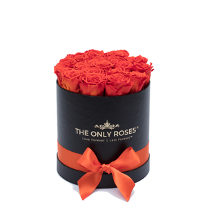 Orange Preserved Roses | Small Round Black Huggy Rose Box - The Only Roses