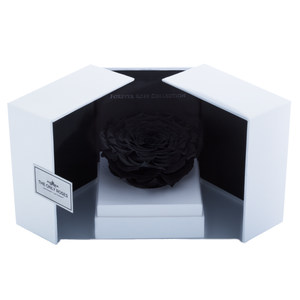 Black Mega Preserved Rose | Swing Opening Box - The Only Roses