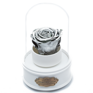 Silver Preserved Rose|The Only Regular White Music Globe - The Only Roses