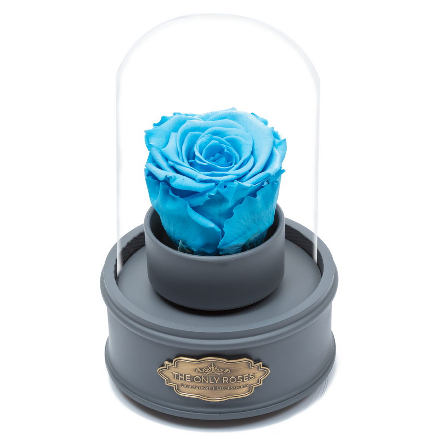 Blue Preserved Rose|The Only Regular Grey Music Globe - The Only Roses