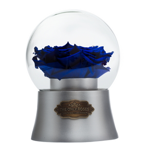 Royal Blue Preserved Rose|The Only Large Silver Music Globe - The Only Roses