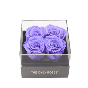 Purple Preserved Roses | Small Square Classic Grey Box