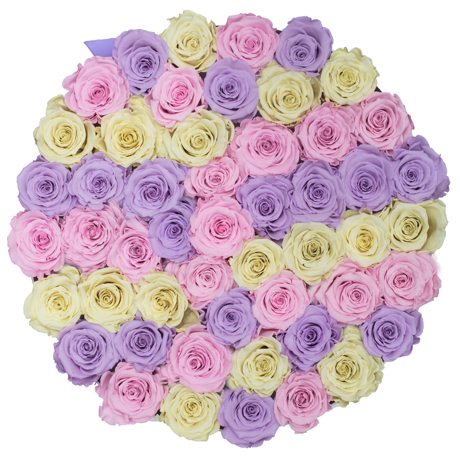 Candy Color Preserved Roses | Large Round White Huggy Rose Box - The Only Roses