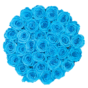Blue Preserved Roses | Medium Round White Huggy Rose Box - The Only Roses