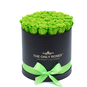 Green Preserved Roses | Medium Round Black Huggy Rose Box - The Only Roses