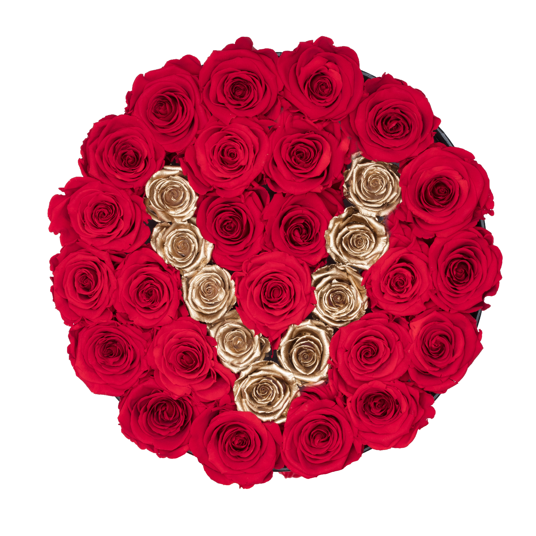 Rose last one year gold letter e preserved roses the only roses gold letter v preserved roses medium round black huggy rose box the altavistaventures Images