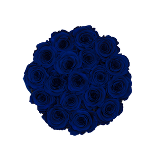 Royal Blue Preserved Roses | Small Round Black Huggy Rose Box - The Only Roses