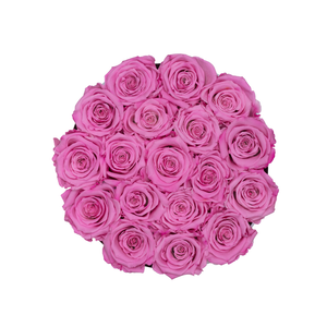 Pink Preserved Roses | Small Round White Huggy Rose Box - The Only Roses