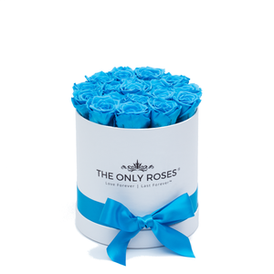 Blue Preserved Roses | Small Round White Huggy Rose Box - The Only Roses