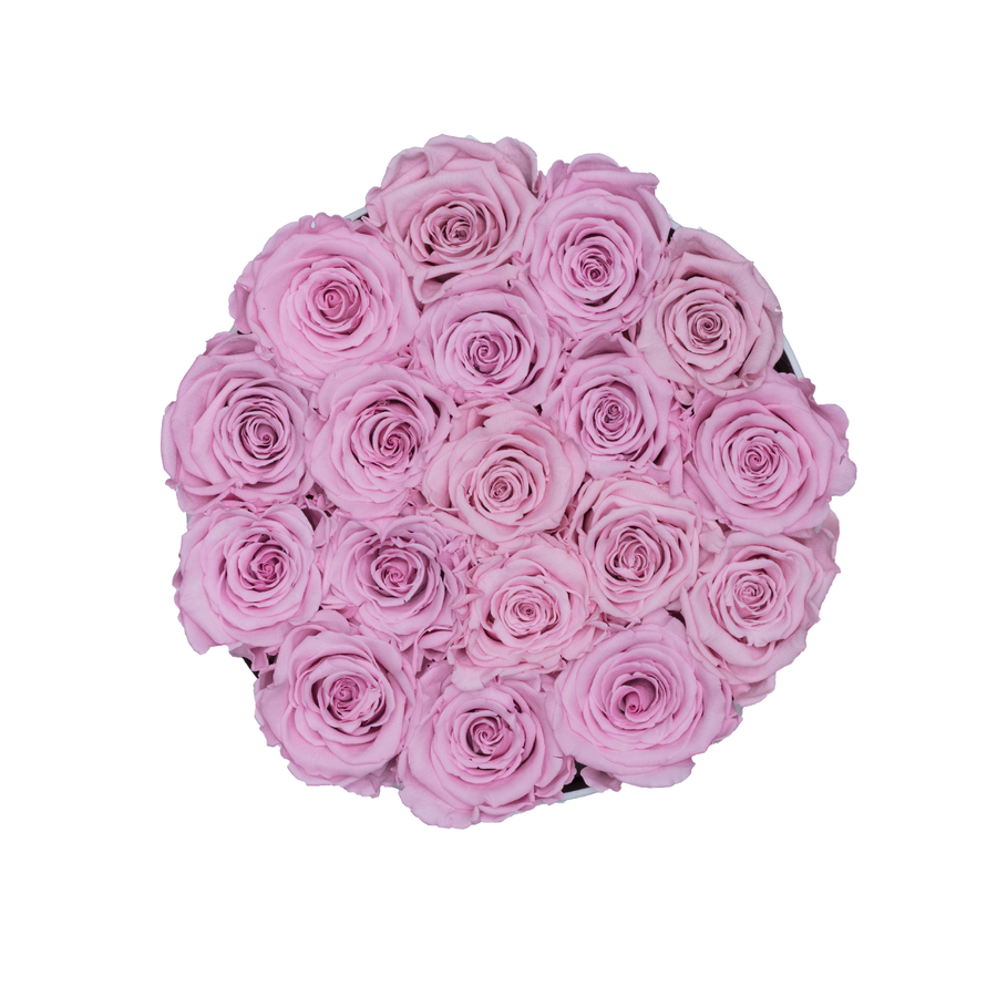 Light Pink Preserved Roses | Small Round White Huggy Rose Box - The Only Roses