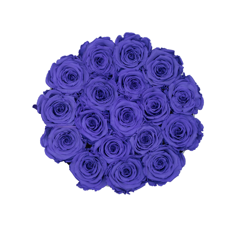 Purple Preserved Roses | Small Round White Huggy Rose Box - The Only Roses