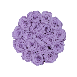 Light Purple Preserved Roses | Small Round White Huggy Rose Box - The Only Roses