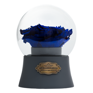 Royal Blue Preserved Rose|The Only Large Grey Music Globe - The Only Roses