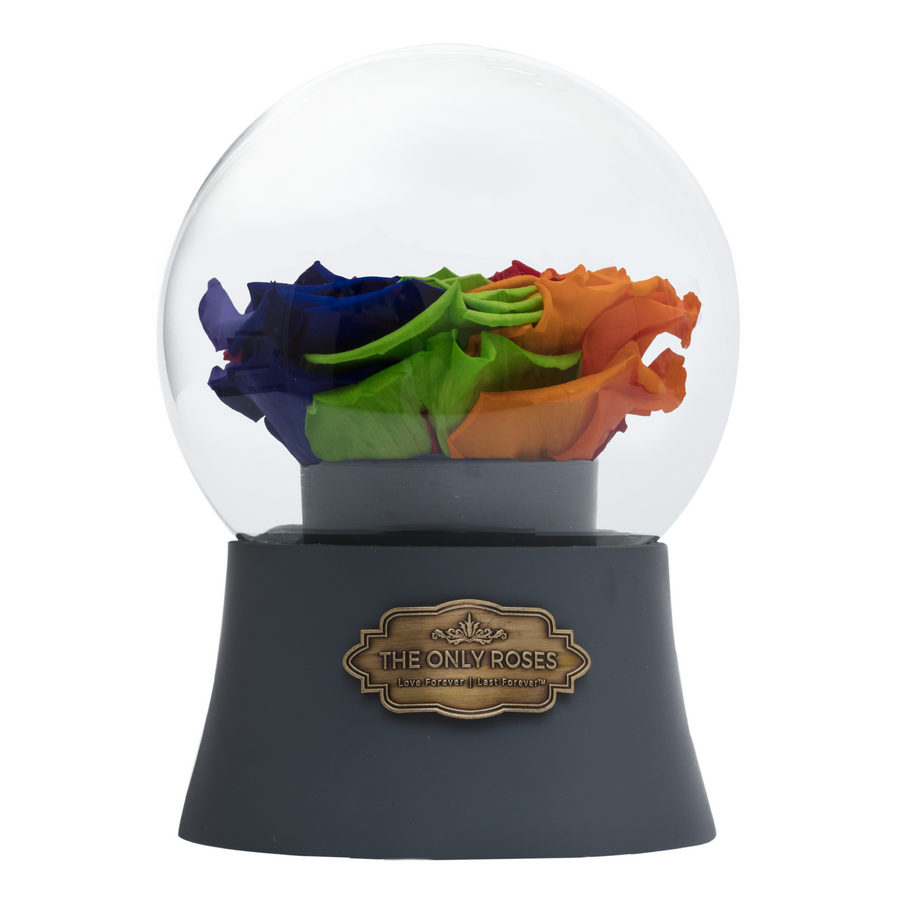 Rainbow Preserved Rose|The Only Large Grey Music Globe - The Only Roses