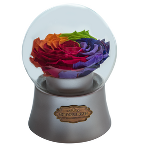 Rainbow Preserved Rose|The Only Large Silver Music Globe - The Only Roses