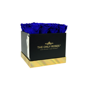 Royal Blue Preserved Roses | Square Black Huggy Rose Box - The Only Roses