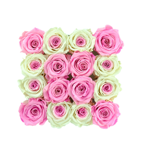 Special Pink and White Preserved Roses | Square White Huggy Rose Box - The Only Roses