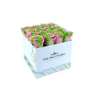 Pink and Green Preserved Roses | Square White Huggy Rose Box - The Only Roses