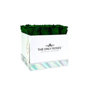 Dark Green Preserved Roses | Square White Huggy Rose Box - The Only Roses