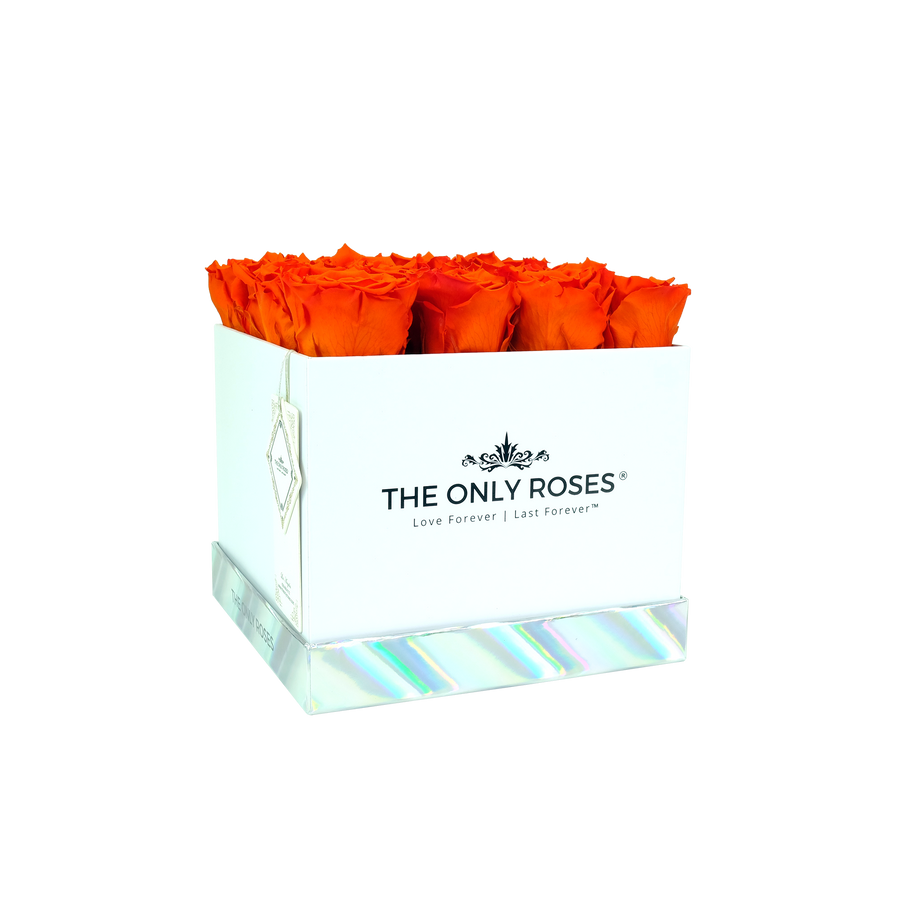 Orange Preserved Roses | Square White Huggy Rose Box - The Only Roses