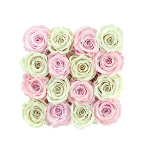 Light Pink and White Preserved Roses | Square White Huggy Rose Box - The Only Roses