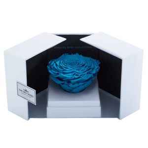 Blue Mega Preserved Rose | Swing Opening Box - The Only Roses