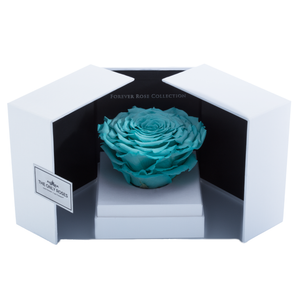 Tiffany Blue Mega Preserved Rose | Swing Opening Box - The Only Roses